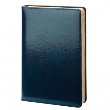 Ежедневник недатированный A5 Blue
